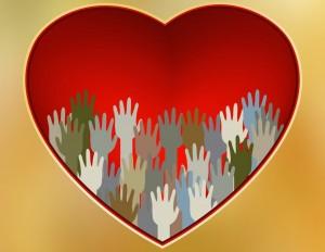organdonasjon-Coulorbox-300x232
